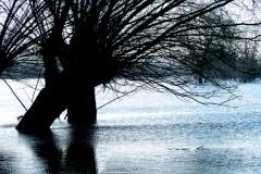 05.-Hoog-water