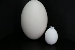 tegenstelling-olgavankoert-02-groot-klein-zwart-wit